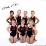 apexgymnastics2016dsc_1830oopalteam