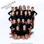 apexgymnastics2016dsc_1960silver