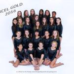 apexgymnastics2016dsc_3253gold