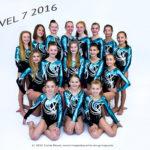apexgymnastics2016dsc_3531lvl7